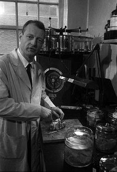 据称,哈维将爱因斯坦的大脑组织送往宾夕法尼亚大学,并在那里对爱因斯坦大脑进行切片,并交给了其他知名神经病理学家(网页截图)爱因斯坦的大脑显微镜载片至今依然在穆特博物馆中展出(网页截图)