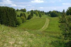 Přírodní rezervace Galovské lúky (19. 5. 2007), foto © Zdeněk Podešva