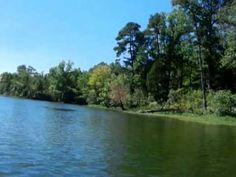 Lake Anna State Park - kayakin' trip http://youtu.be/ZHy72XuzQC0?list=PLd5d7oRtFPBQUCc9mnLlR50xRNrPcoqwr