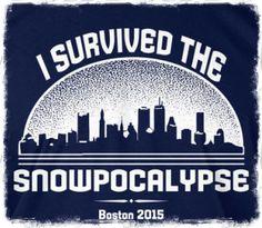 Boston Snowpocalypse 2015 :)