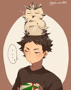 Akaashi Keiji (and we all know that's Bokuto) | Haikyuu!!