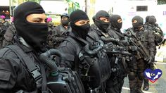 Image result for naval special warfare force spain