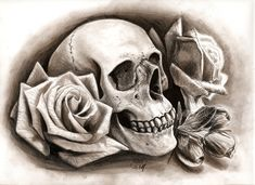 Skull with roses by jamesboots