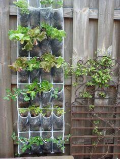 shoe rack garden
