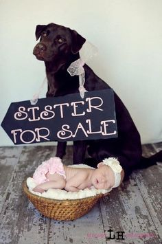 Newborn pic.  So gonna do this with baby W and Sarge!