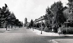 Beukendaal 1964, reschts de West-Varkenoordseweg.