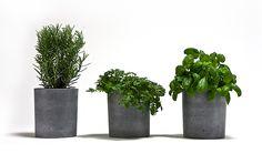 Spicepots betongrau