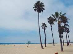 Want to visit LA but short on time? Here's an article about how to two days in LA, highlighting top spots in Hollywood, Beverly Hills, Santa Monica, and Venice.