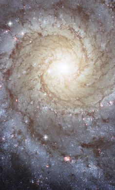 Spiral Galaxy M74 | Sunday 5 October 2014 festive lights look like a crown on vacation, this NASA / ESA Hubble Space Telescope nearby spiral galaxy M74 image..