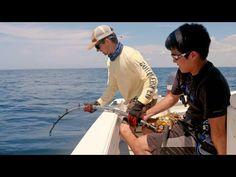 Bass Fishing Fishing Tips