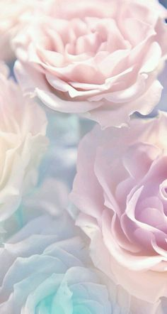 Ideas flowers wallpaper iphone spring phone backgrounds for 2019 Wallpaper Pastel, Flower Wallpaper, Screen Wallpaper, Nature Wallpaper, Cool Wallpaper, Mobile Wallpaper, 2017 Wallpaper, Trendy Wallpaper, Wallpaper Ideas