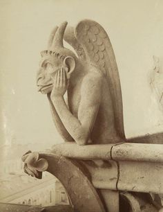 Gargoyle at Notre Dame by Unknown Photographer
