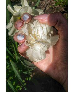 #springeverywhere #nails #flowers