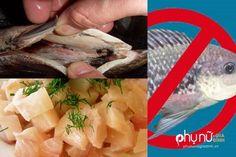 Cảnh báo: Hãy ngừng ăn cá rô phi bị nhiễm độc ngay lập tức sau khi đọc bài này…