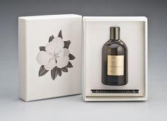 Grandiflora - Magnolia Grandiflora