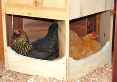 Corner nestboxes to save space