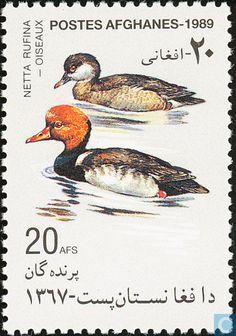 KANDAHAR AFGHANISTAN VS Timbres-poste - Afghanistan [AFG] - Oiseaux