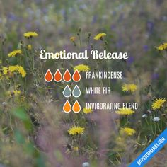 Emotional Release - Essential Oil Diffuser Blend