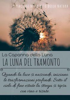 La Capanna della Luna – Spirito della Natura Wicca, Plants, Full Moon, La Luna, Plant, Wiccan, Planets
