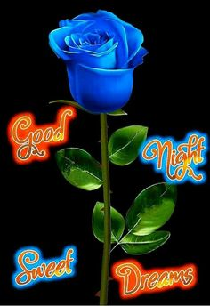 Good Night Images For Whatsapp Funny Good Night Images, Funny Good Night Quotes, Good Night Love Messages, Photos Of Good Night, Good Night To You, Romantic Good Night, Cute Good Night, Good Night Friends, Good Night Greetings