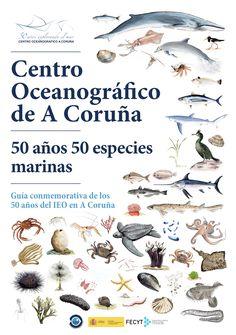 CENTRO OCEANOGRÁFICO DE A CORUÑA : 50 años, 50 especies marinas : guía conmemorativa de los 50 años del IEO en A Coruña / autores, Urbano Autón... (et al.). -- [S.l.] : Instituto Español de Oceanografía-Centro Oceanográfico de A Coruña, 2018. -- 50 p. : il. cor ; 25 cm.  1. Fauna mariña Fauna Marina, Movie Posters, Underwater Life, Mexican Artwork, Illustrations, Entryway, Libraries, Authors, Film Poster