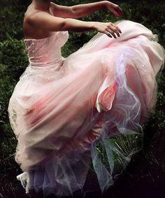 Billowing Pink