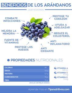 Infografia de los arandanos