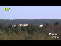 Uitkijktoren Emma-Piramide Rozendaalsche Veld