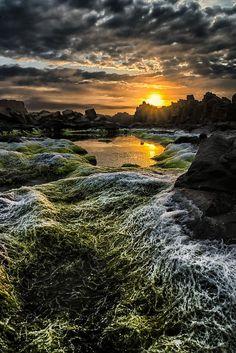 Kiama Beach, Australia Paul Emmings Photography - Սաթո Թագուհին - Google+