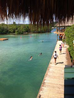 Swim, Roatan Roatan, Honduras, Swimming, Scenery, Swim
