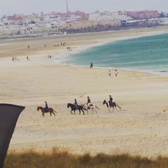 #tarifa #hotelartevida #artevida #windsurf#kitesurf#foodporn #painting #chillout #artist #conil #sunny #beach #elpalmar#drinkporn #vacation #canosdemeca#zaharadelosatunes #photooftheday  #instadaily #instafollow #algeciras #instagood #instacool #instadrinkay #instadaily #instafollow #followme #instagood #instacool #instadrink