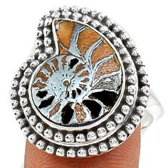 Fossil-Pyrite-Ammonite-925-Sterling-Silver-Ring-Jewelry-s-7-5-SR113236