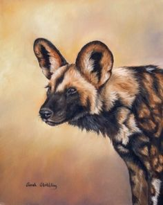 AFRICAN WILD DOG PAINTINGS | Oils available on ebay now.