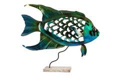 A Loja do Gato Preto   Peixe @ Fish