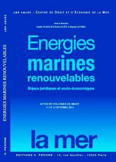 Cote BLP : P039-GUE-E (auteurs UBO et Ifremer)