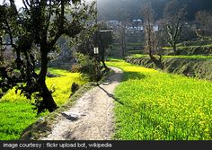 Dharmakot path