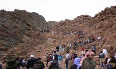 Saint Catherine, Dahab receive 1,041 tourists over…