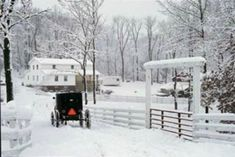 An Amish winter scene.....