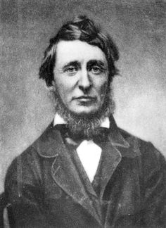 An poster sized print, approx (other products available) - Henry David Thoreau - American essayist and poet. Original Publication: People Disc - (Photo by Hulton Archive/Getty Images) - Image supplied by Fine Art Storehouse - Poster printed in Australia Henry David Thoreau, Ap Language, English Language, Fine Art Prints, Canvas Prints, Essayist, Peaceful Protest, Portraits, Heritage Image
