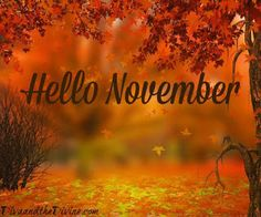 Hello November quotes pictures and wallpapers hello november goodbye october hello november jicbyjulie goodbye hello november quotes pictures and wallpapers i love palm springs november halloween quotes ★★★★★ 523 Hello November Pictures November Pictures, November Images, November Quotes, Fall Pictures, Hallo November, November Month, Hello October, Sweet November, June