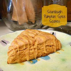 Ingredients: 2 ½ cup flour ½ cup brown sugar 1 tsp. pumpkin pie spice 1 tsp. cream of tartar 1 tsp. baking soda ½ tsp. salt ½ cup cold butter 1 cup 100% hydration