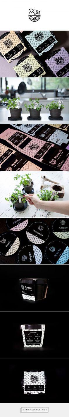 Convida Home Planter Packaging by Leolab | Logo Designer Bradenton, Web Design Sarasota, Tampa Fivestar Branding Agency #plants #plantpackaging #packaging #packaginginspiration #package #packagedesign #design
