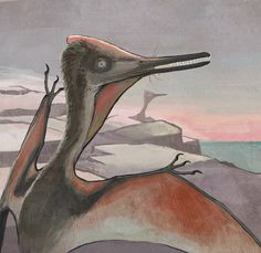 A slightly immature Pterodactylus pterosaur by an ancient seashore. A mature specimen can be seen on the background. www.cmkosemen.com
