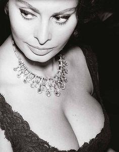 The gorgeous Sophia Loren, 1962