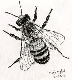 Wood Engraver: Honey Bee Postage Stamps. Part 1 - Designing