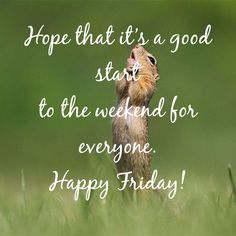 Finally Friday, Best Start, Tgif, Happy Friday, Quotes, Quotations, Quote, Shut Up Quotes