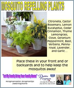 Plants to help keep the mosquito's away! #krogmanrealtor #krogmantips #nobite #plants