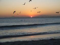 Por-do-sol , sunset