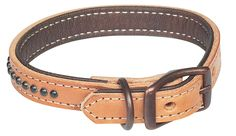basic leather collar, but very efficient.