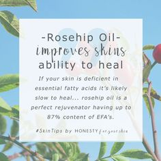 Rosehip oil improves skins ability to heal... if your skin is deficient in essential fatty acids, it's likely slow to heal... rosehip oil is a perfect rejuvenator with up to 87% content of essential fatty acids... before you invest in rosehip oil make sur